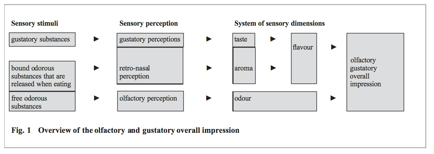 Overview of the olfactory and gustatory overall impression